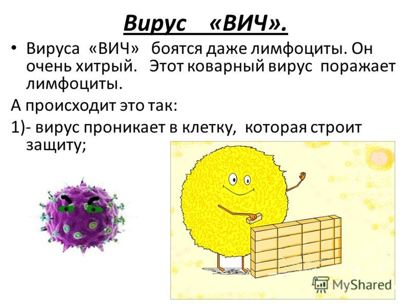 Вирус «ВИЧ». Вируса «ВИЧ» боятся даже лимфоциты. Он очень хитрый. Этот коварный вирус поражает лимфоциты. А происходит это так: 1)- вирус проникает в клетку, которая строит защиту;