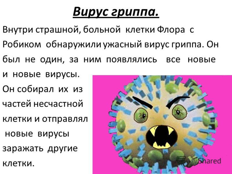 Вирус гриппа. Внутри страшной, больной клетки Флора с Робиком обнаружили ужасный вирус гриппа. Он был не один, за ним появлялись все новые и новые вирусы. Он собирал их из частей несчастной клетки и отправлял новые вирусы заражать другие клетки.