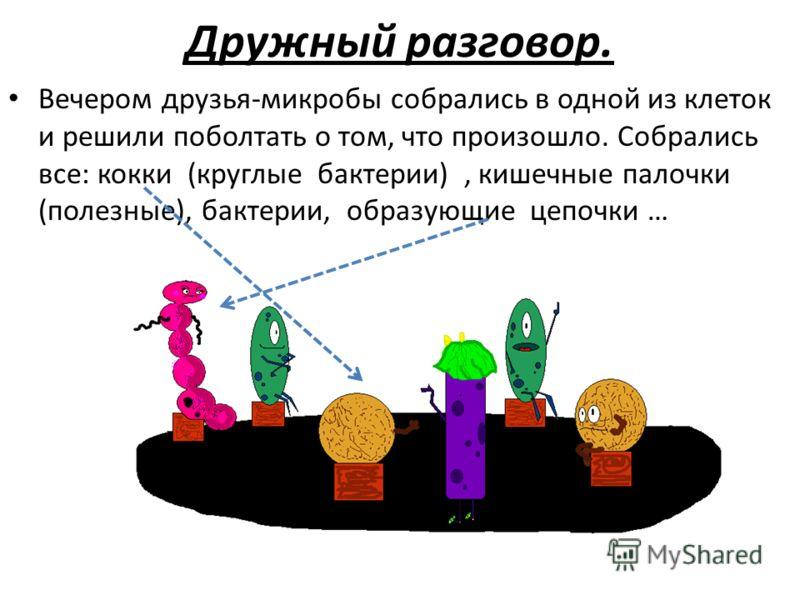 Дружный разговор. Вечером друзья-микробы собрались в одной из клеток и решили поболтать о том, что произошло. Собрались все: кокки (круглые бактерии), кишечные палочки (полезные), бактерии, образующие цепочки …