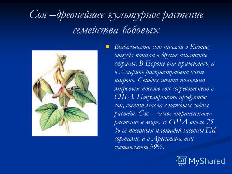 Соя –древнейшее культурное растение семейства бобовых Возделывать сою начали в Китае, откуда попала в другие азиатские страны. В Европе она прижилась, а в Америке распространена очень широко. Сегодня почти половина мировых посевов сои сосредоточено в