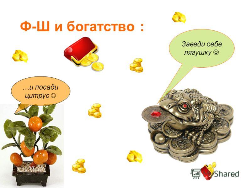 14 Ф-Ш и богатство : Заведи себе лягушку …и посади цитрус