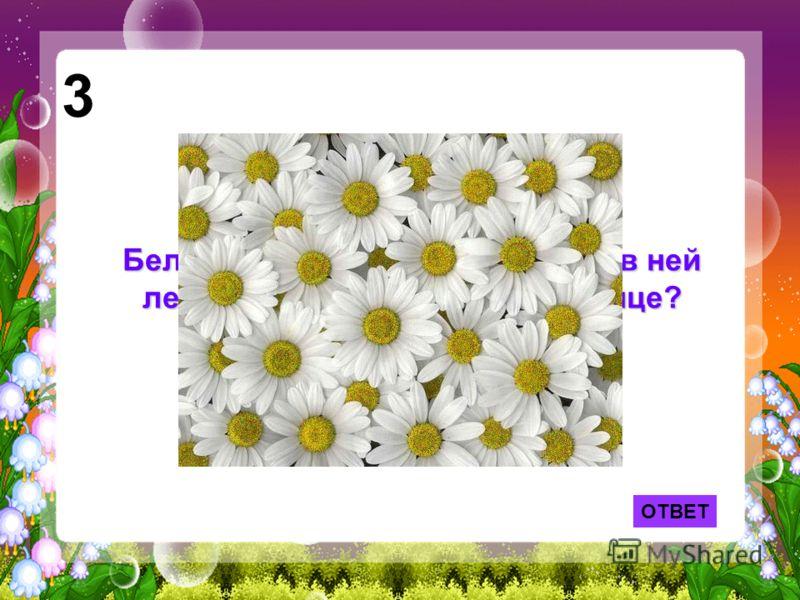 Белая корзина, золотое донце - в ней лежит росинка и сверкает солнце? 3