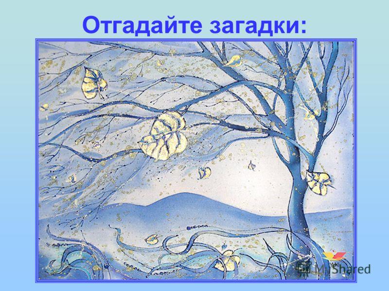 Отгадайте загадки: Вот он деревце качает И разбойником свистит, Вот последний лист срывает И кружит его, кружит...