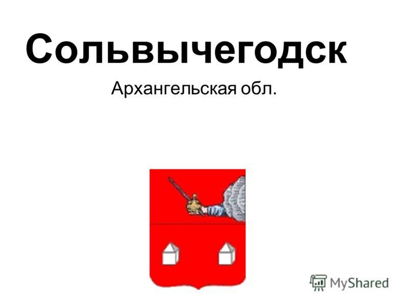 Сольвычегодск Архангельская обл.