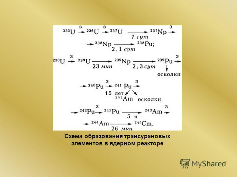 Схема образования трансурановых элементов в ядерном реакторе