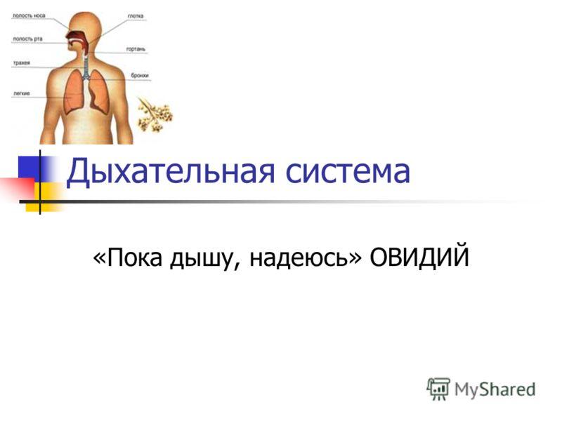 Дыхательная система «Пока дышу, надеюсь» ОВИДИЙ