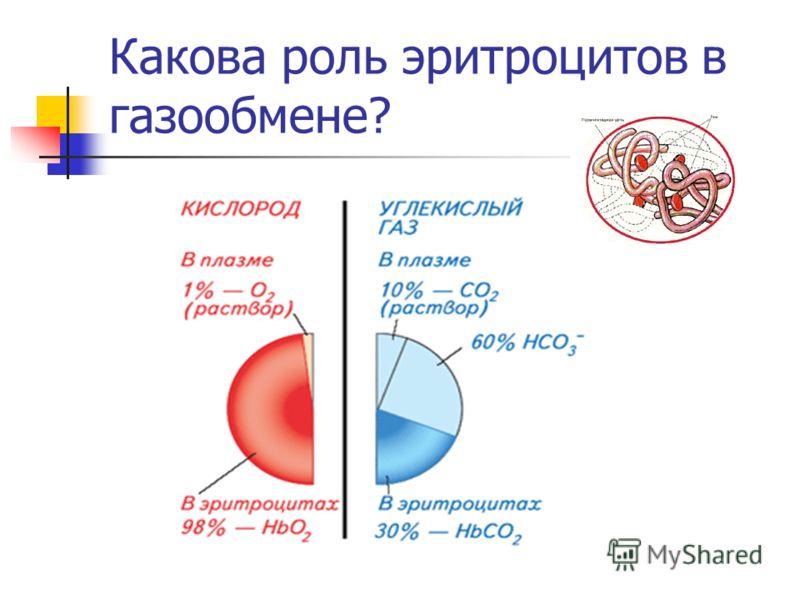 Какова роль эритроцитов в газообмене?