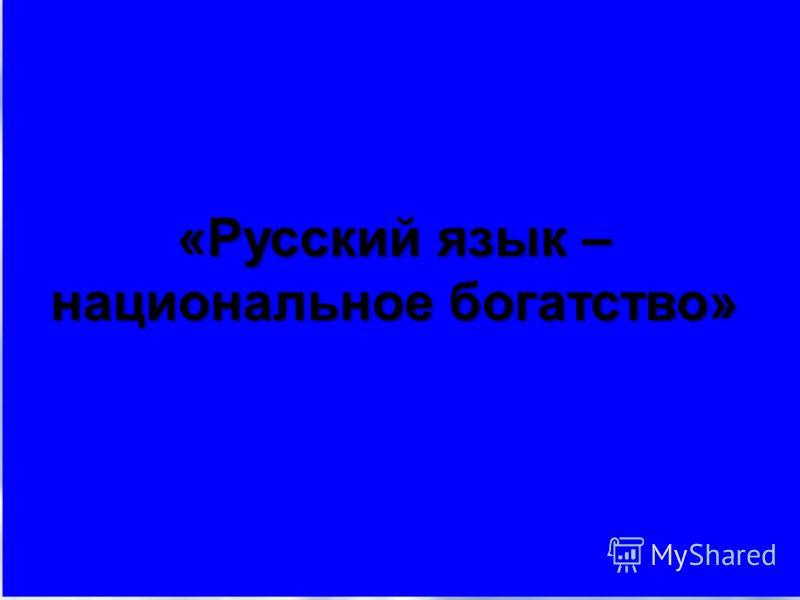 «Русский язык – национальное богатство»