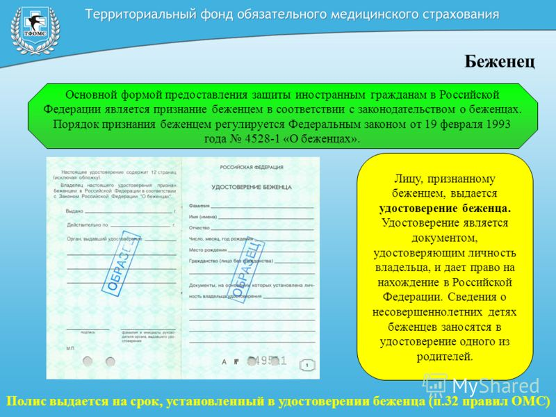 Основной формой предоставления защиты иностранным гражданам в Российской Федерации является признание беженцем в соответствии с законодательством о беженцах. Порядок признания беженцем регулируется Федеральным законом от 19 февраля 1993 года 4528-1 «
