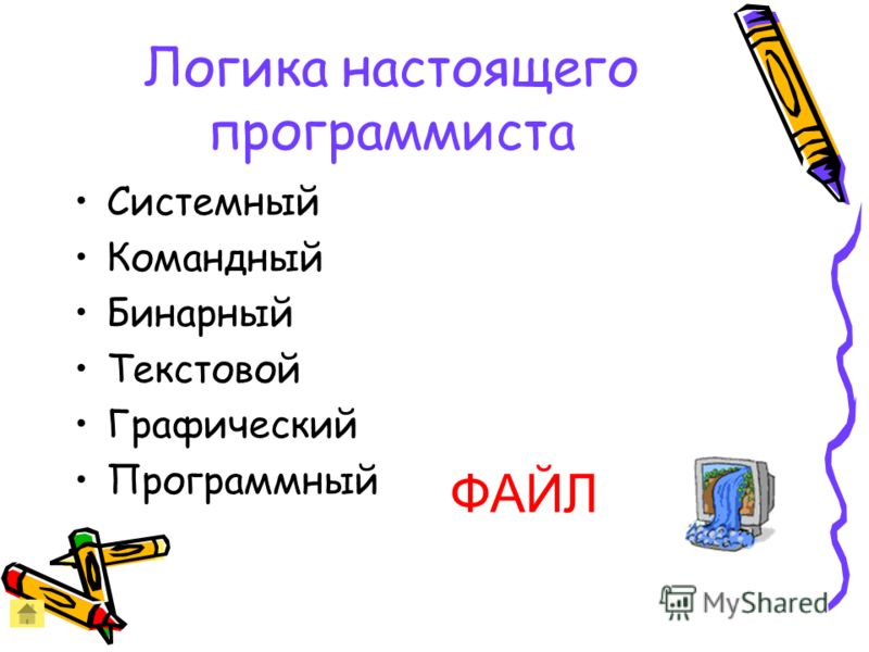 Логика настоящего программиста Системный Командный Бинарный Текстовой Графический Программный ФАЙЛ