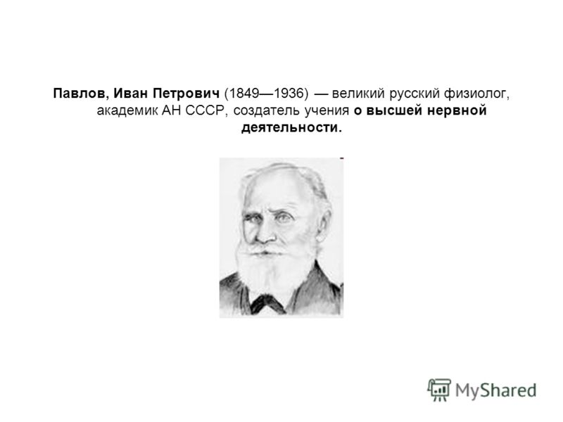 Павлов, Иван Петрович (18491936) великий русский физиолог, академик АН СССР, создатель учения о высшей нервной деятельности.