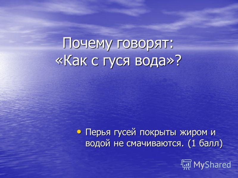 Почему говорят: «Как с гуся вода»? Перья гусей покрыты жиром и водой не смачиваются. (1 балл) Перья гусей покрыты жиром и водой не смачиваются. (1 балл)