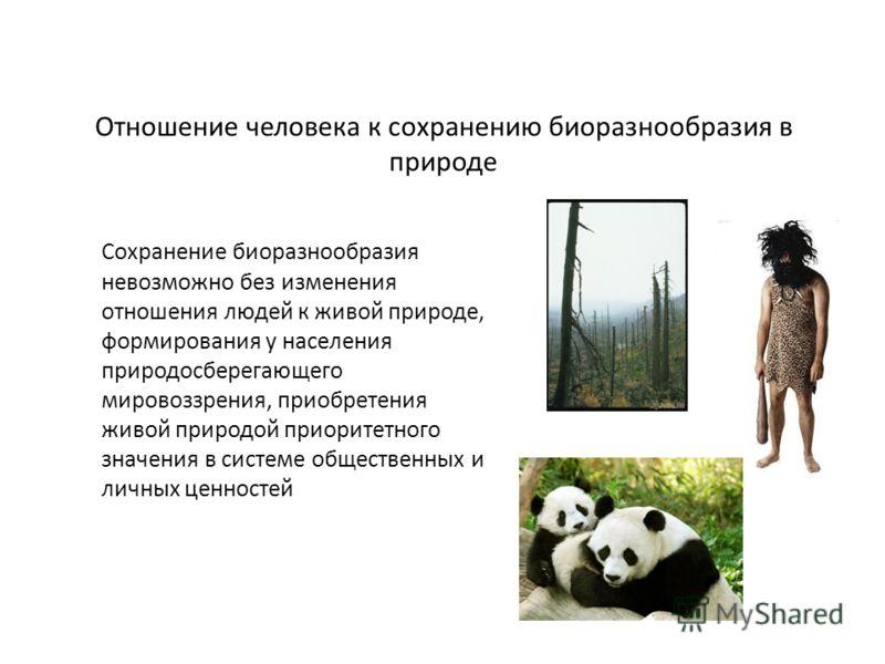 Отношение человека к сохранению биоразнообразия в природе Сохранение биоразнообразия невозможно без изменения отношения людей к живой природе, формирования у населения природосберегающего мировоззрения, приобретения живой природой приоритетного значе