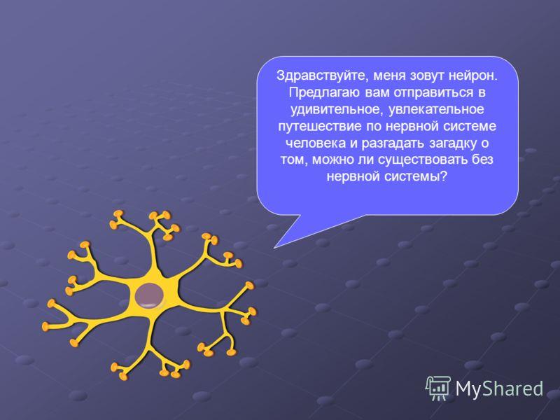 Здравствуйте, меня зовут нейрон. Предлагаю вам отправиться в удивительное, увлекательное путешествие по нервной системе человека и разгадать загадку о том, можно ли существовать без нервной системы?