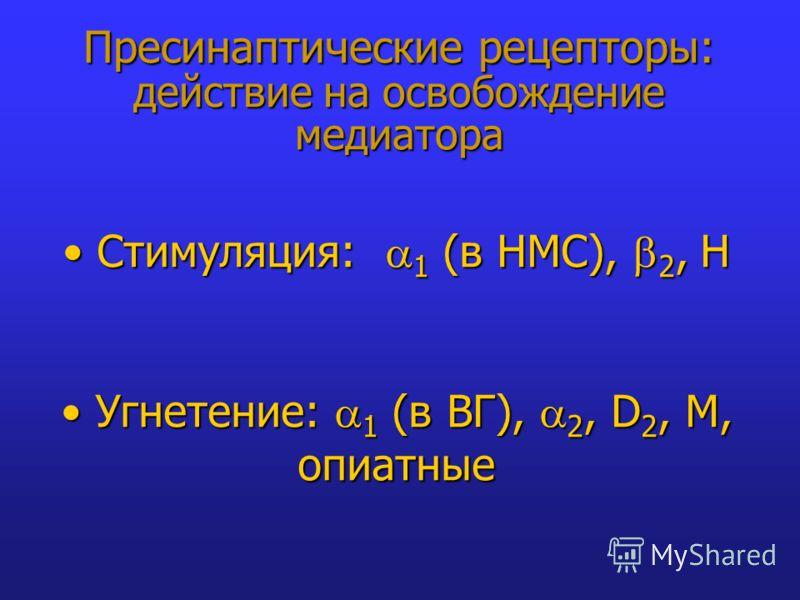 Пресинаптические рецепторы: действие на освобождение медиатора Стимуляция: 1 (в НМС), 2, Н Стимуляция: 1 (в НМС), 2, Н Угнетение: 1 (в ВГ), 2, D 2, M, опиатные Угнетение: 1 (в ВГ), 2, D 2, M, опиатные