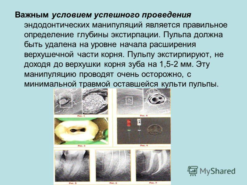 Важным условием успешного проведения эндодонтических манипуляций является правильное определение глубины экстирпации. Пульпа должна быть удалена на уровне начала расширения верхушечной части корня. Пульпу экстирпируют, не доходя до верхушки корня зуб