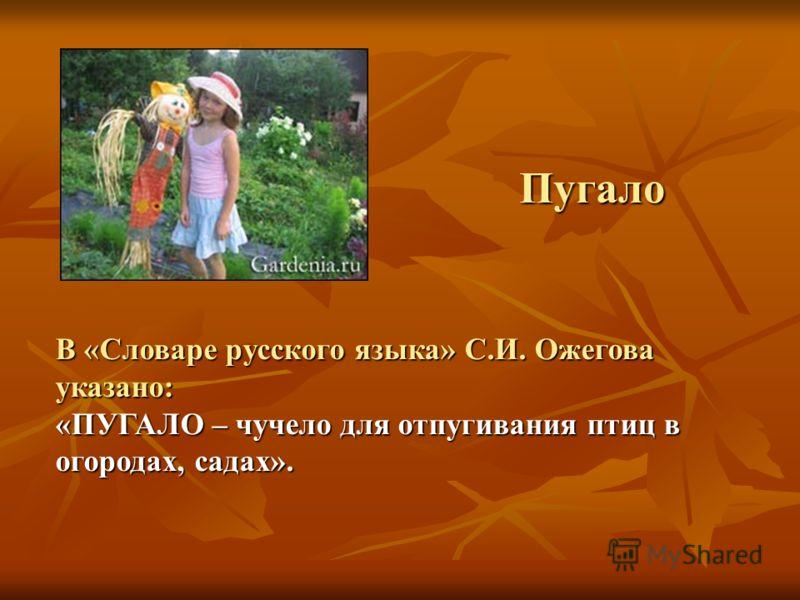 В «Словаре русского языка» С.И. Ожегова указано: «ПУГАЛО – чучело для отпугивания птиц в огородах, садах». Пугало