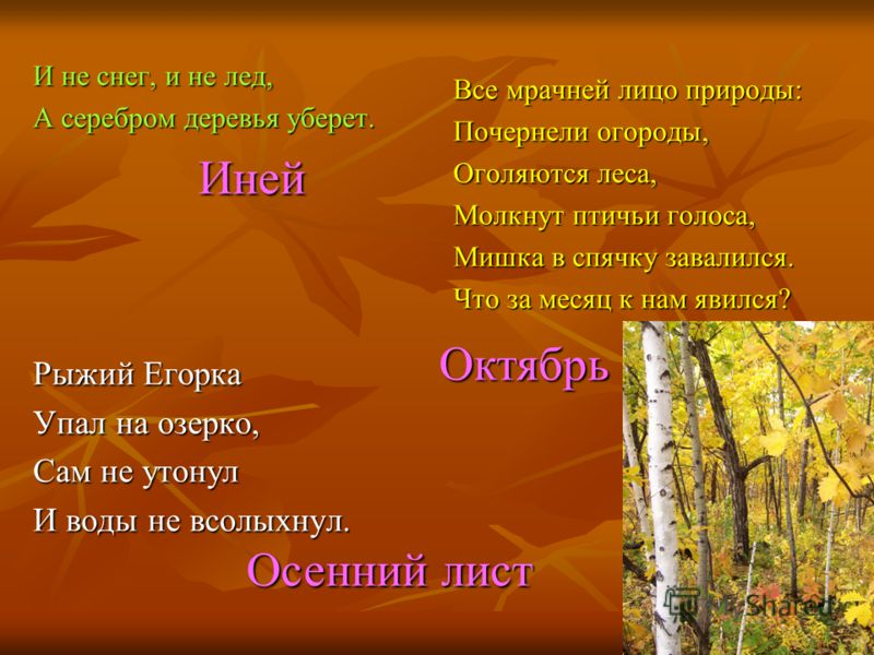 И не снег, и не лед, А серебром деревья уберет. Рыжий Егорка Упал на озерко, Сам не утонул И воды не всолыхнул. Все мрачней лицо природы: Почернели огороды, Оголяются леса, Молкнут птичьи голоса, Мишка в спячку завалился. Что за месяц к нам явился? И