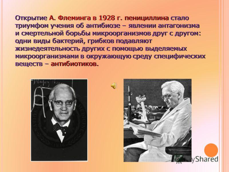Открытие А. Флеминга в 1928 г. пенициллина стало триумфом учения об антибиозе – явлении антагонизма и смертельной борьбы микроорганизмов друг с другом: одни виды бактерий, грибков подавляют жизнедеятельность других с помощью выделяемых микроорганизма