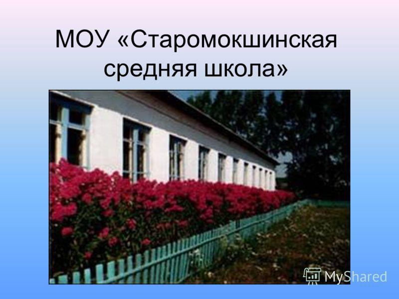 МОУ «Старомокшинская средняя школа»