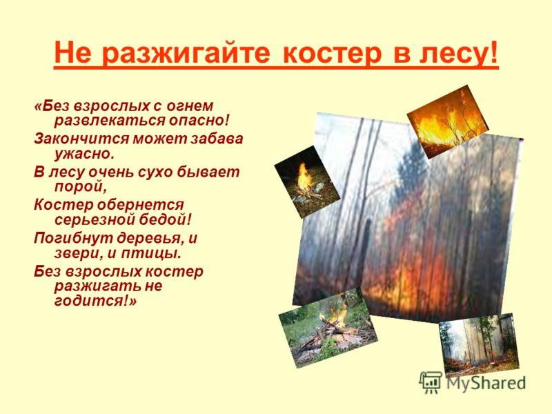 Не разжигайте костер в лесу! «Без взрослых с огнем развлекаться опасно! Закончится может забава ужасно. В лесу очень сухо бывает порой, Костер обернется серьезной бедой! Погибнут деревья, и звери, и птицы. Без взрослых костер разжигать не годится!»