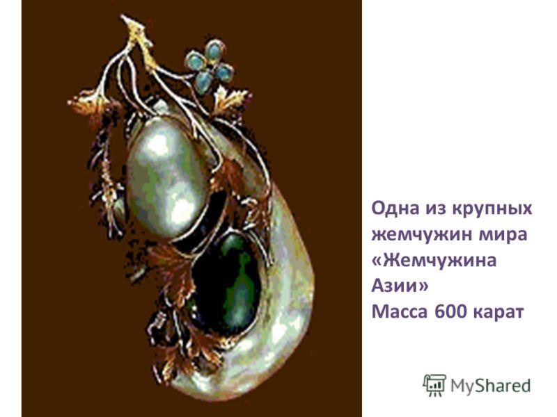 Одна из крупных жемчужин мира «Жемчужина Азии» Масса 600 карат