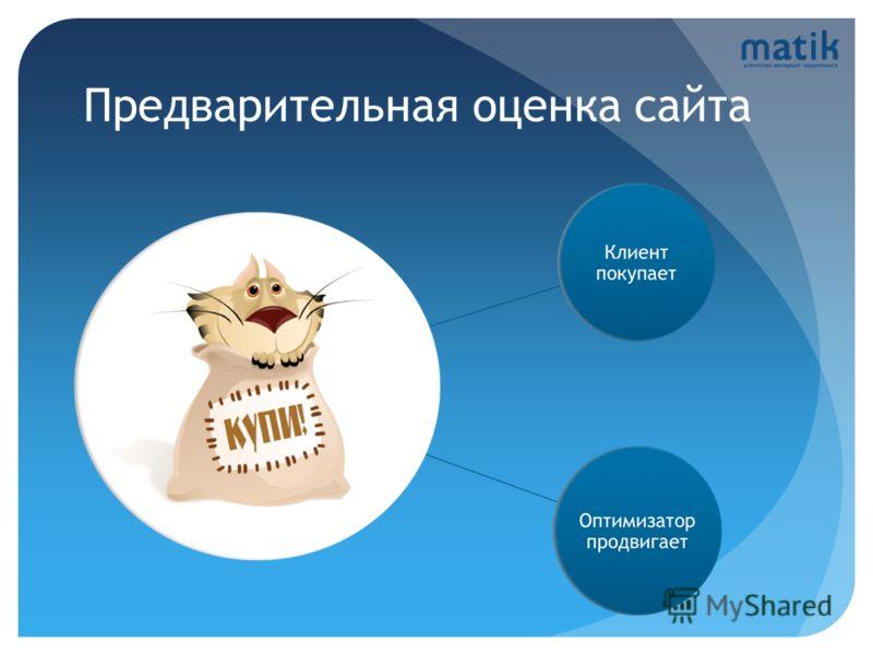 Предварительная оценка сайта