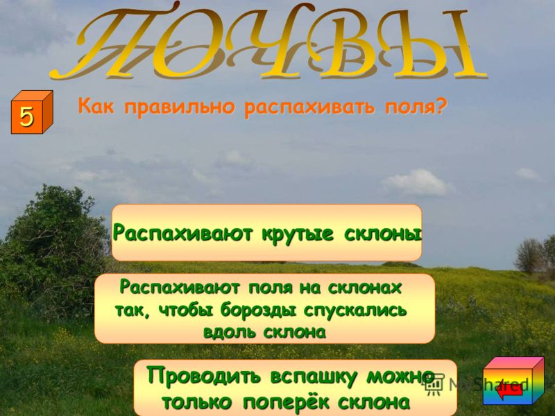 Что делают для охраны почв? Образование оврагов Правильная распашка полей на склонах Употребление ядохимикатов и удобрений на полях 4