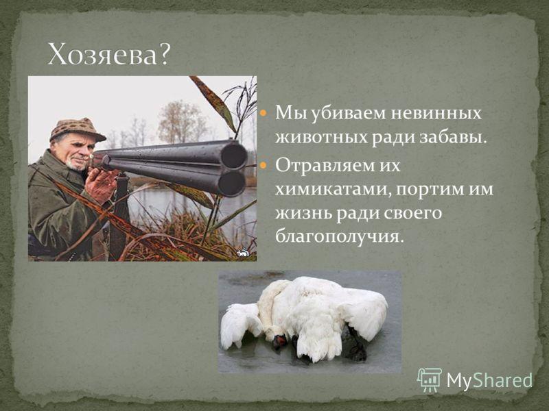 Мы убиваем невинных животных ради забавы. Отравляем их химикатами, портим им жизнь ради своего благополучия.