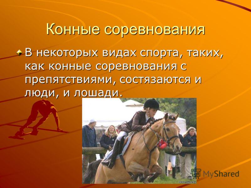 Конные соревнования В некоторых видах спорта, таких, как конные соревнования с препятствиями, состязаются и люди, и лошади.