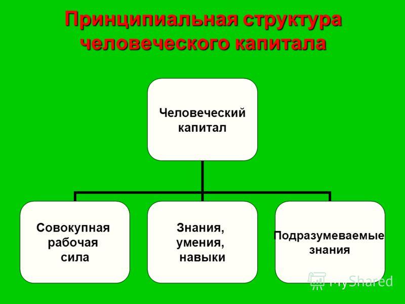 Принципиальная структура человеческого капитала Человеческий капитал Совокупная рабочая сила Знания, умения, навыки Подразумеваемые знания