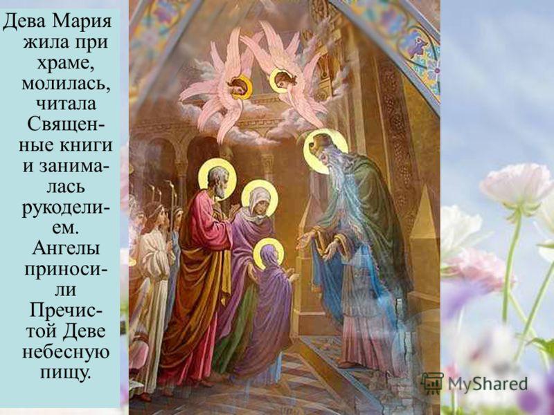 Дева Мария жила при храме, молилась, читала Священ- ные книги и занима- лась рукодели- ем. Ангелы приноси- ли Пречис- той Деве небесную пищу.