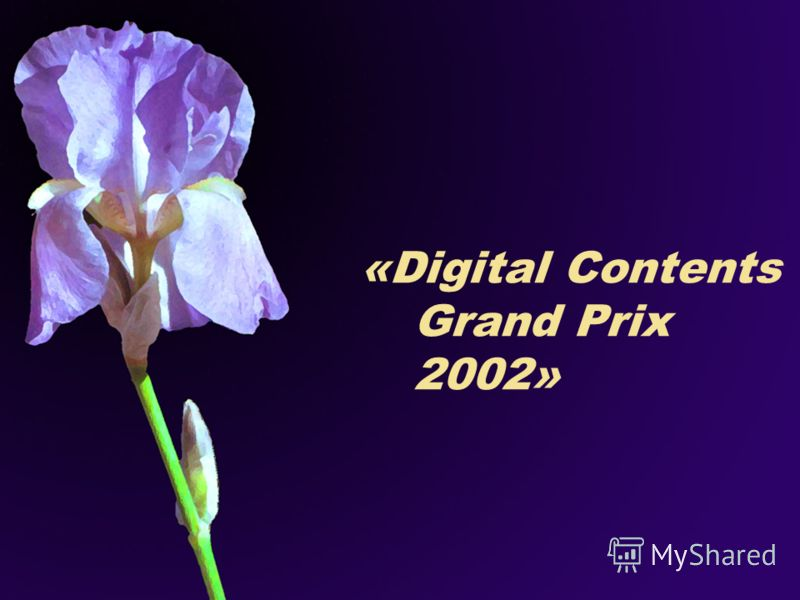 «Digital Contents Grand Prix 2002»