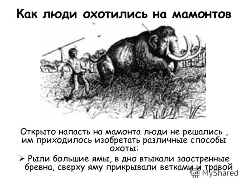 Как люди охотились на мамонтов Открыто напасть на мамонта люди не решались, им приходилось изобретать различные способы охоты: Рыли большие ямы, в дно втыкали заостренные бревна, сверху яму прикрывали ветками и травой