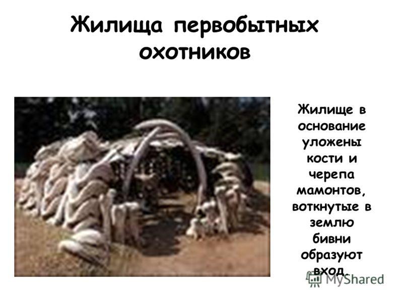 Жилища первобытных охотников Жилище в основание уложены кости и черепа мамонтов, воткнутые в землю бивни образуют вход.
