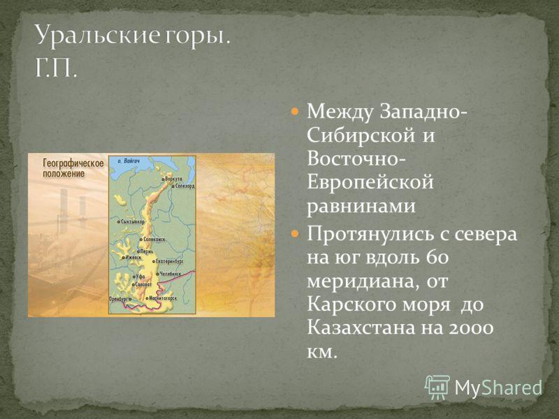 Между Западно- Сибирской и Восточно- Европейской равнинами Протянулись с севера на юг вдоль 60 меридиана, от Карского моря до Казахстана на 2000 км.