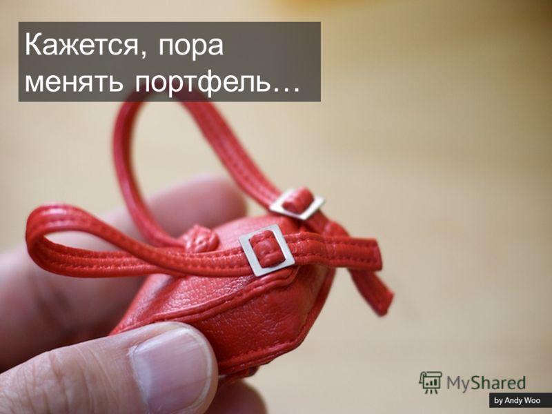 by Andy Woo Кажется, пора менять портфель…