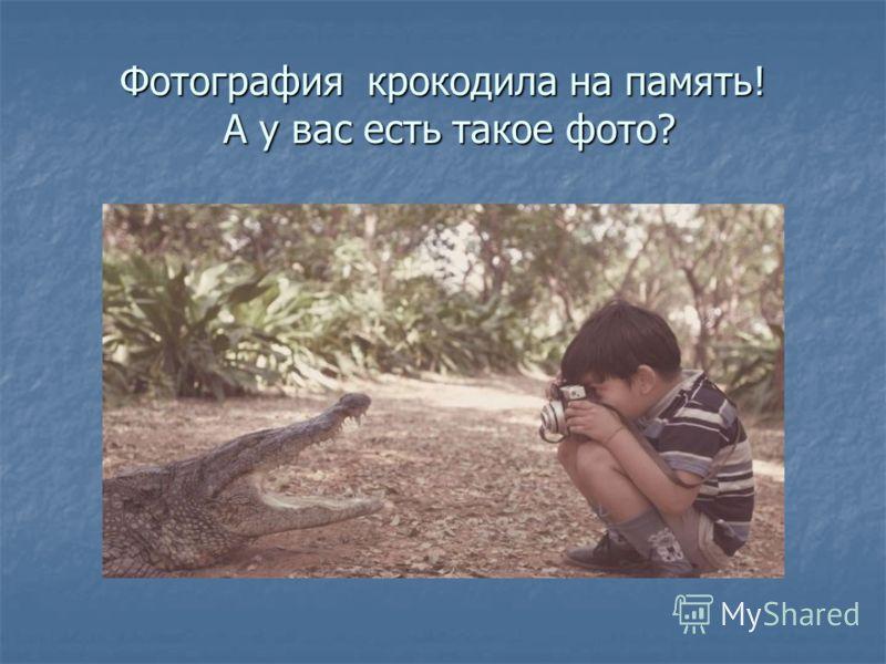 Фотография крокодила на память! А у вас есть такое фото?