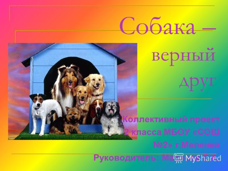 Собака – верный друг Коллективный проект 2 класса МБОУ «СОШ 2» г.Меленки Руководитель: Маркова Е.А.