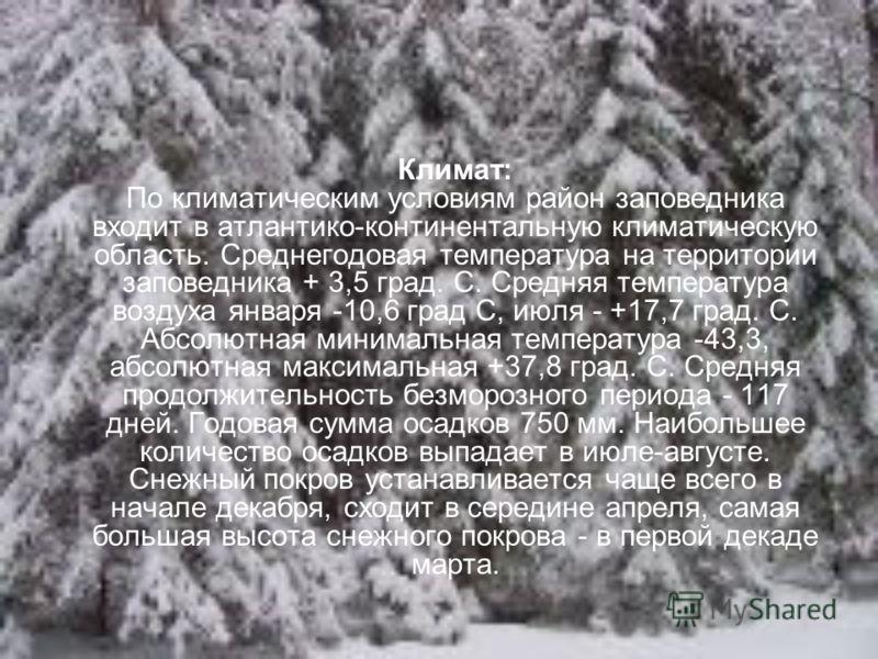 Климат: По климатическим условиям район заповедника входит в атлантико-континентальную климатическую область. Среднегодовая температура на территории заповедника + 3,5 град. С. Средняя температура воздуха января -10,6 град С, июля - +17,7 град. С. Аб