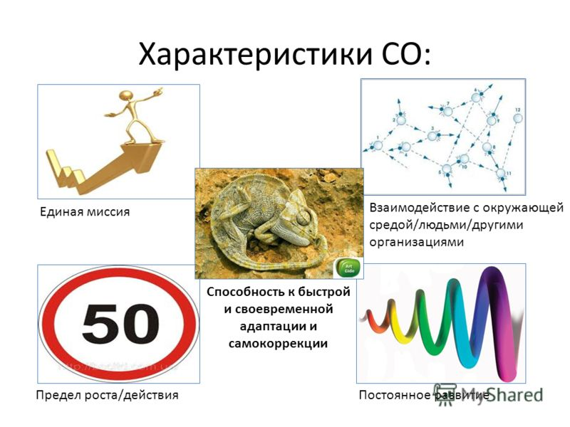 Характеристики СО: Единая миссия Взаимодействие с окружающей средой/людьми/другими организациями Предел роста/действияПостоянное развитие Способность к быстрой и своевременной адаптации и самокоррекции