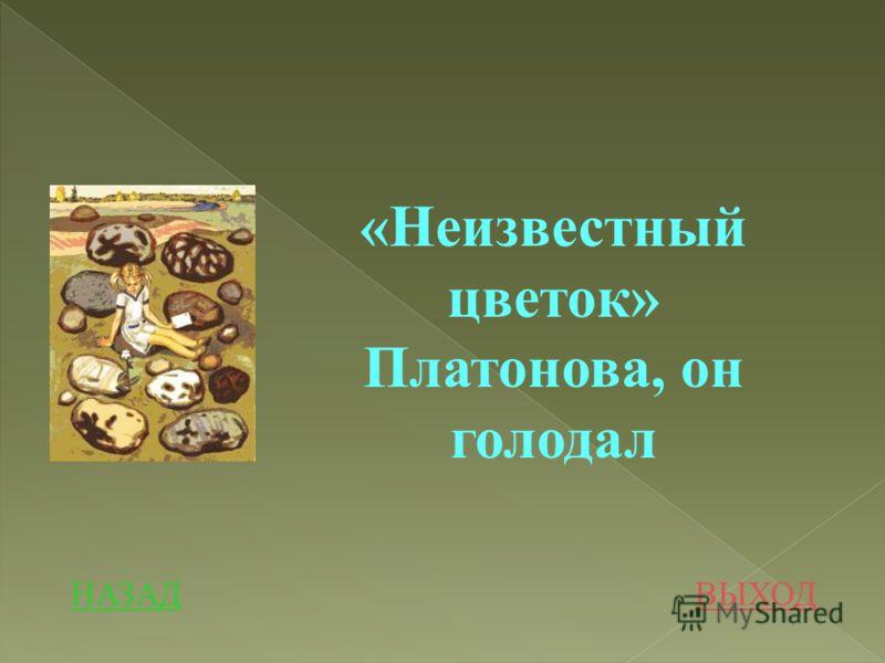 НАЗАДВЫХОД «Неизвестный цветок» Платонова, он голодал