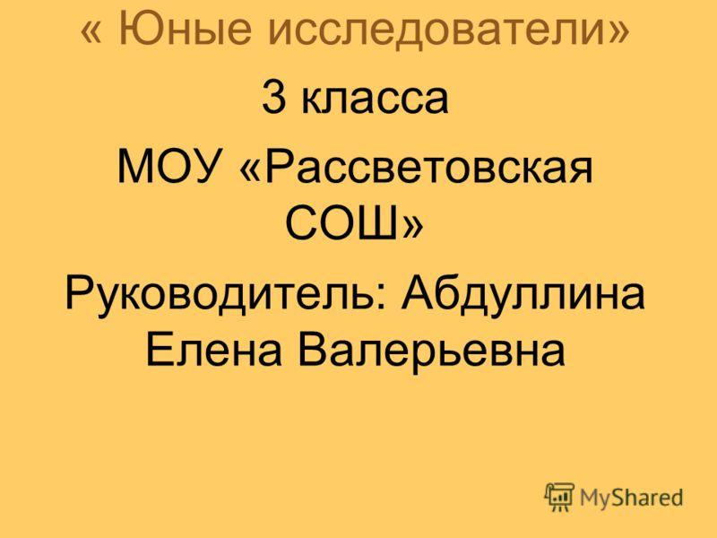 « Юные исследователи» 3 класса МОУ «Рассветовская СОШ» Руководитель: Абдуллина Елена Валерьевна