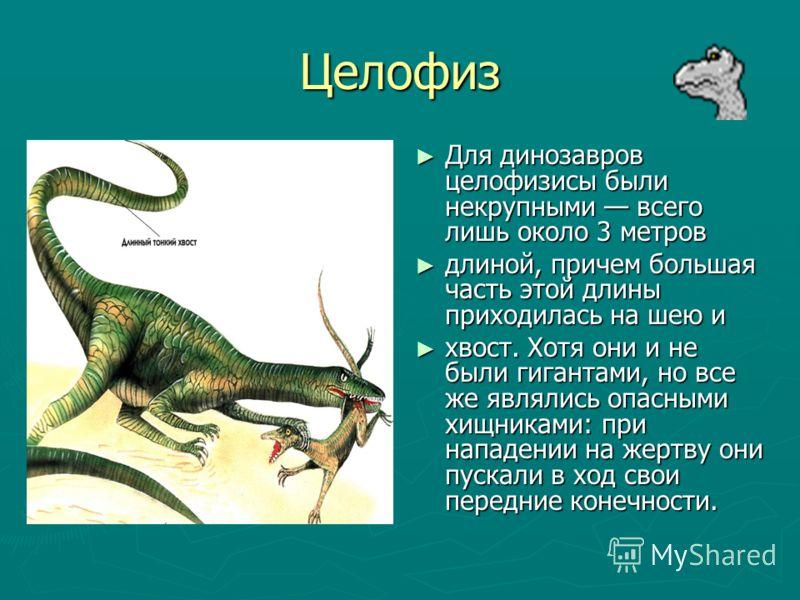 Мусзавр Мусзавры- ранние динозавры. У них была маленькая голова, длинная шея, массивное туловище и длинный хвост. Детеныши мусзавров по размерам не превосходили мышь; однако они быстро росли и уже через несколько лет достигали полной величины взросло