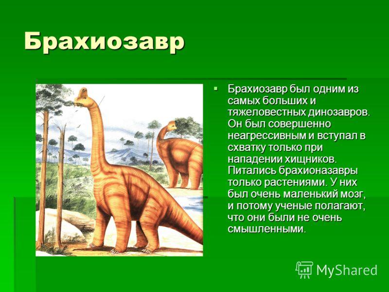 Целофиз Для динозавров целофизисы были некрупными всего лишь около 3 метров Для динозавров целофизисы были некрупными всего лишь около 3 метров длиной, причем большая часть этой длины приходилась на шею и длиной, причем большая часть этой длины прихо