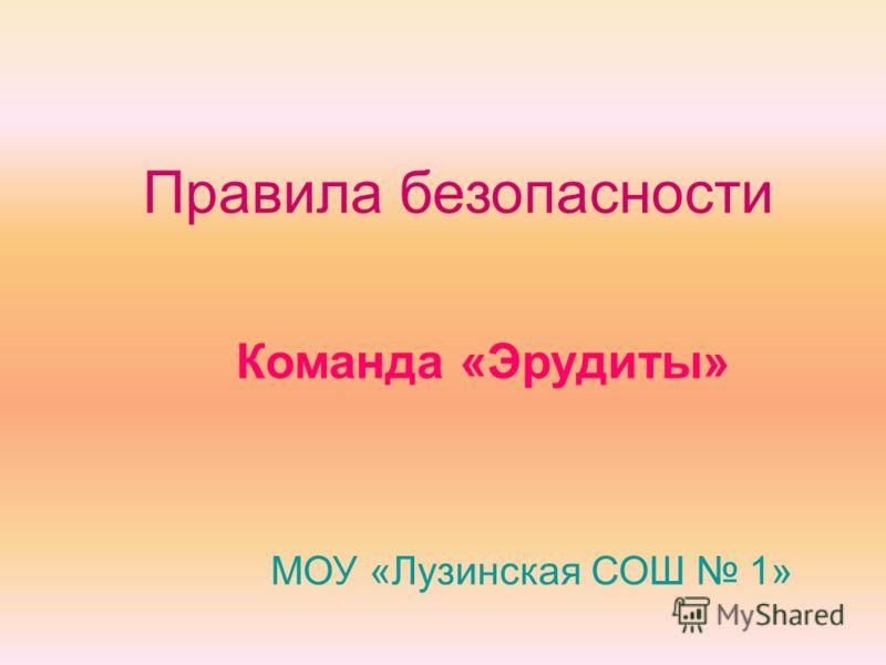 Правила безопасности Команда «Эрудиты» МОУ «Лузинская СОШ 1»