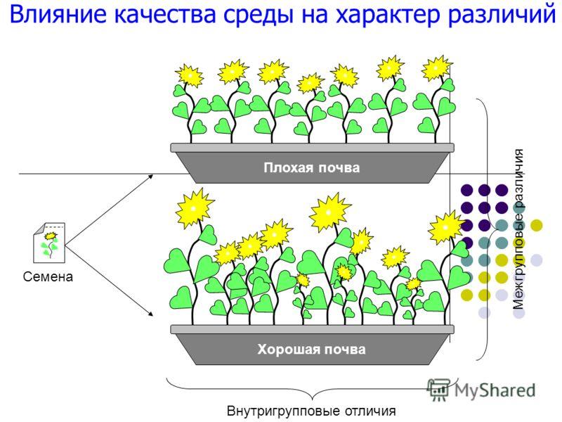 Хорошая почва Плохая почва Межгрупповые различия Внутригрупповые отличия Семена Влияние качества среды на характер различий