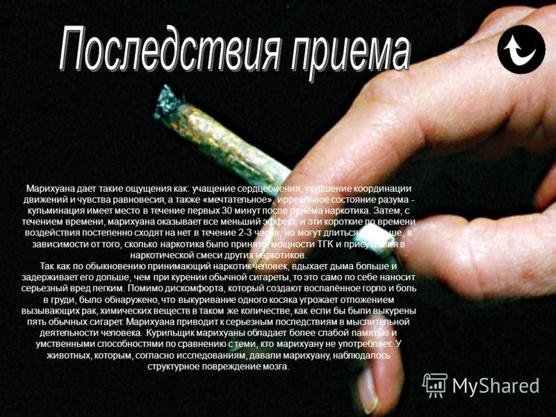 Марихуана (конопля) - наиболее распространённый нелегальный наркотик в мире. Опрос, проведённый в 2002 году, показал: только в США 14 миллионов человек курили марихуану хотя бы один раз в течение предшествовавшего опросу месяца. Марихуану обычно куря