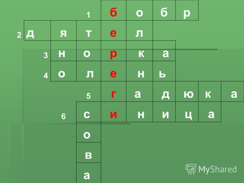 1 бобр 2 дятел 3 н о р к а 4 о ле нь 5 га д юк а 6 с и н и ц а о в а