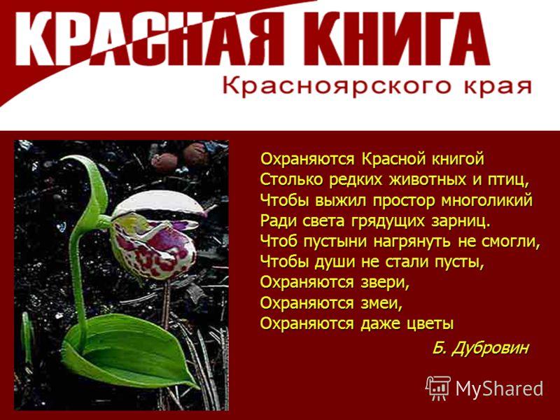 Охраняются Красной книгой Столько редких животных и птиц, Чтобы выжил простор многоликий Ради света грядущих зарниц. Чтоб пустыни нагрянуть не смогли, Чтобы души не стали пусты, Охраняются звери, Охраняются змеи, Охраняются даже цветы Охраняются Крас